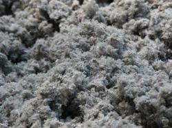 Isolation en ouate de cellulose