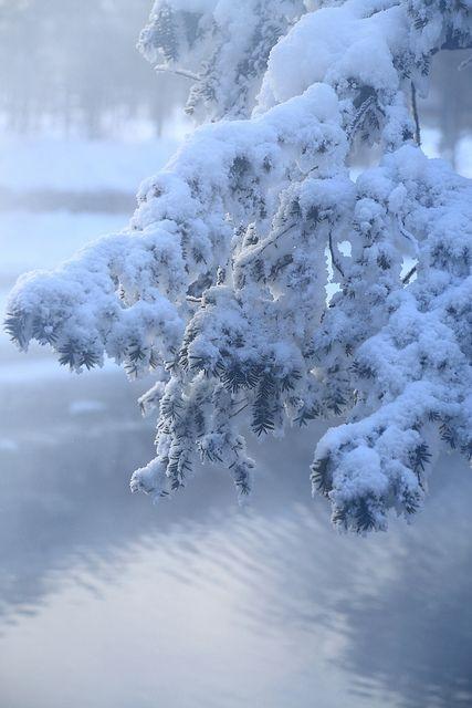 和琴半島 屈斜路湖 釧路湿原#9 | Flickr - Photo Sharing!