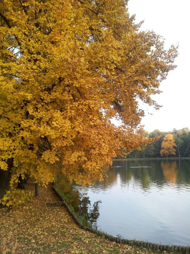 Autumn in Pruszkow