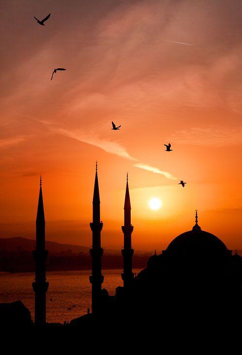 "Allahou Rabi, Muhammedun Nabïe, El-Islamou Deenih, islamimanihsan: ""Contemplation brings calm to..."