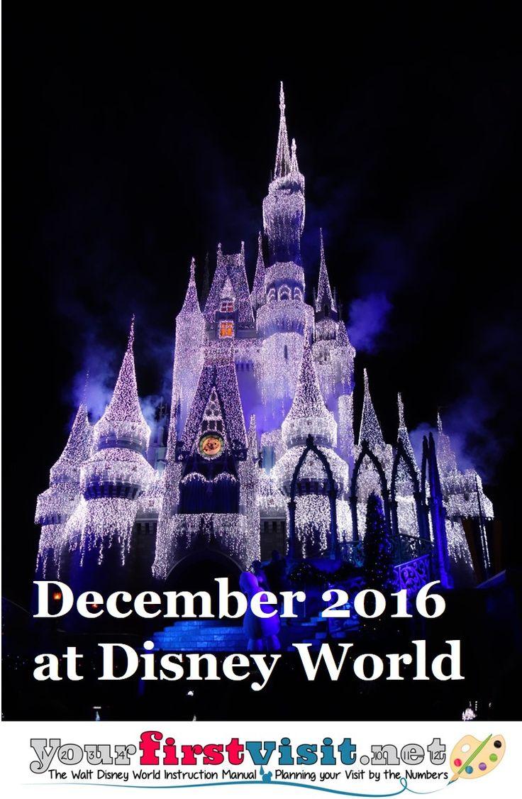 The 25+ best Disney world christmas 2016 ideas on Pinterest