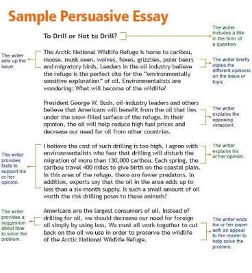 Persuasive Essay For High School