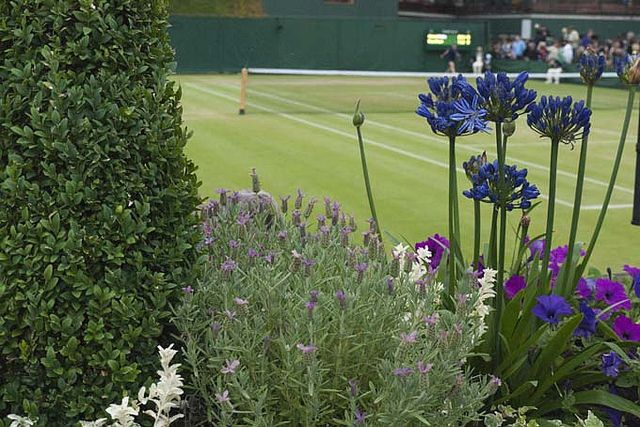 Wimbledon is the most famous tennis tournament in the world.
