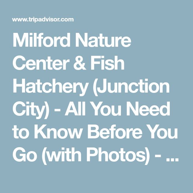 Milford Nature Center & Fish Hatchery (Junction City) - All You Need to Know Before You Go (with Photos) - TripAdvisor