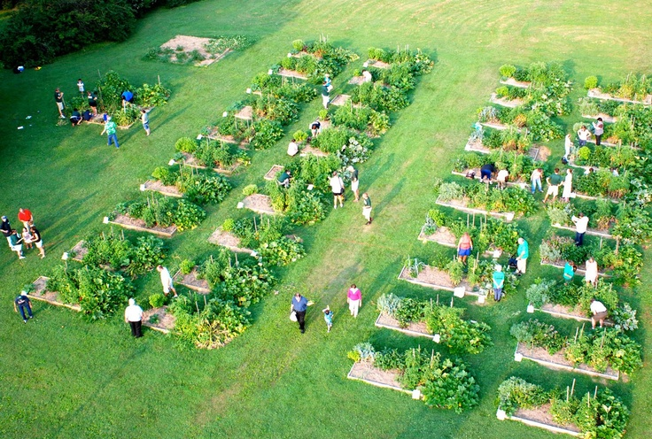 17 best images about alabaster community garden ideas on