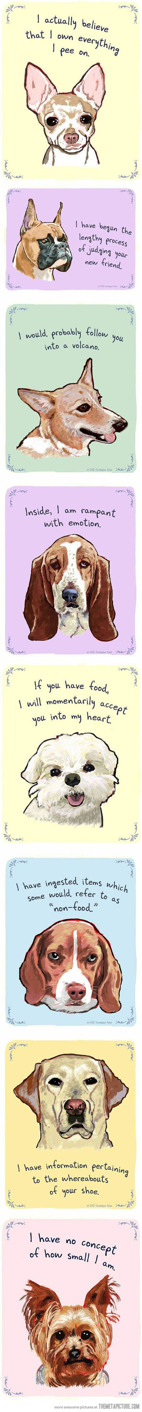 Dog Confessions  These are pretty accurate and funny