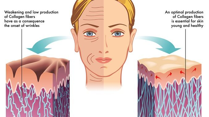 Find Out Which Types Of Collagen Supplements Work How Much To Take And What The Best Collagen Supplement Bra Collagen Collagen Powder Improve Skin Elasticity