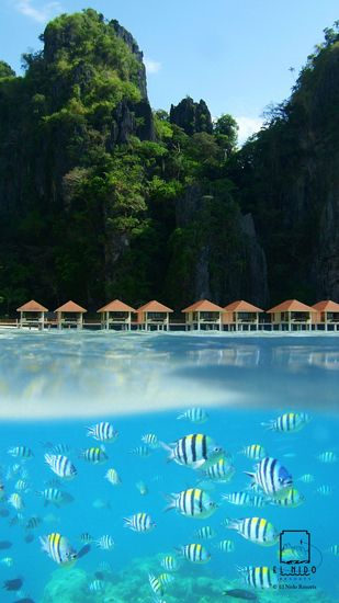Lagen Island Resort - El Nido Palawan -  This exclusive resort is situated in a cove fringed by a thick tropical forest with towering limestone formations on its sides.