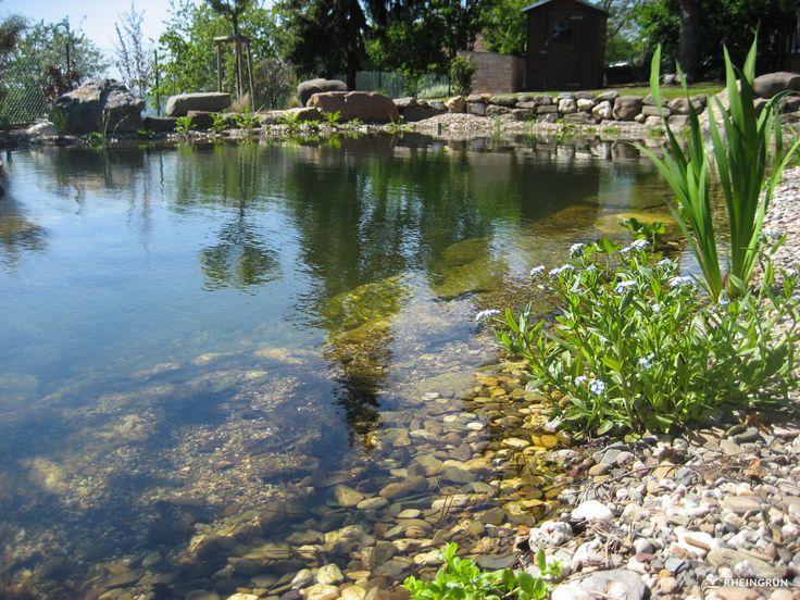 Simple Naturnaher Schwimmteich am Hang mit Strandkorb und Holzterrasse