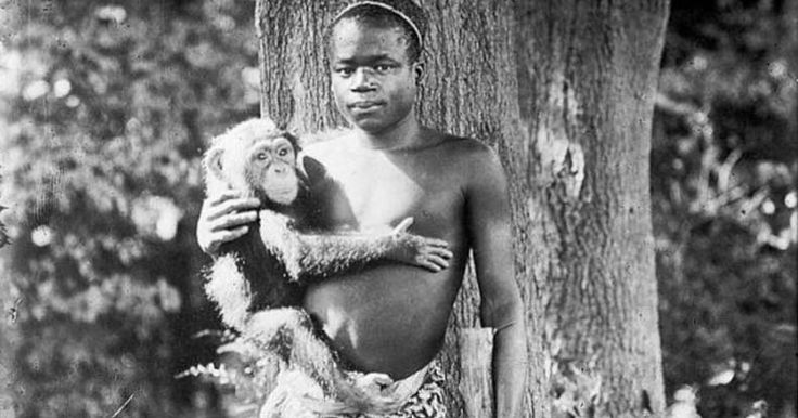 "40 years after the abolishment of slavery, Benga was billed as the ""missing link"", on display in the Bronx Zoo cage alongside a monkey."