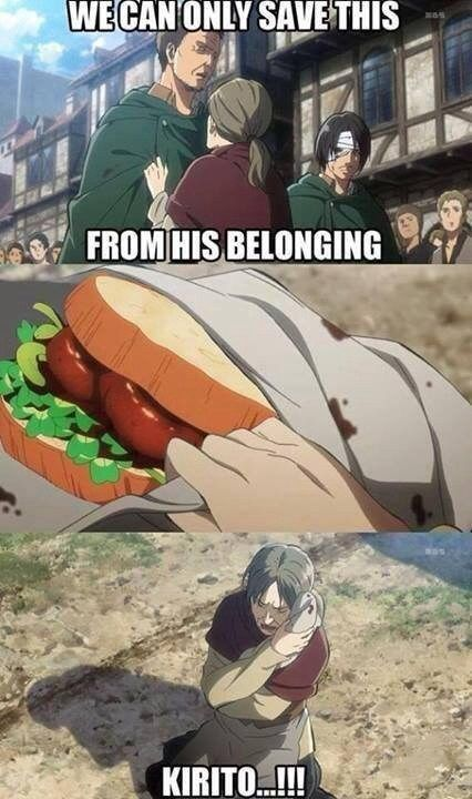 Anime/manga: SNK and SAO Characters: ???, ???, and someone's arm (sandwich), LOL!