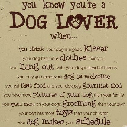 Funny Dog Love Quotes : You know youre a dog lover when... * Dog Mom Pinterest Love it ...