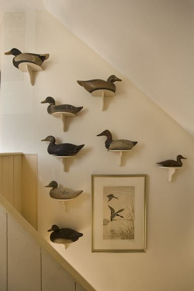 duck decoy displays - Google Search