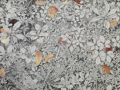 Fallen Leaves and Weeds (落ち葉と雑草)
