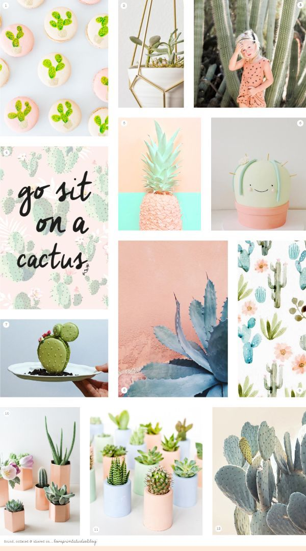 love print studio blog: Midweek moodbaord...But first, cacti