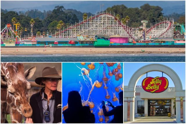 Kid-friendly attractions in the San Francisco Bay area