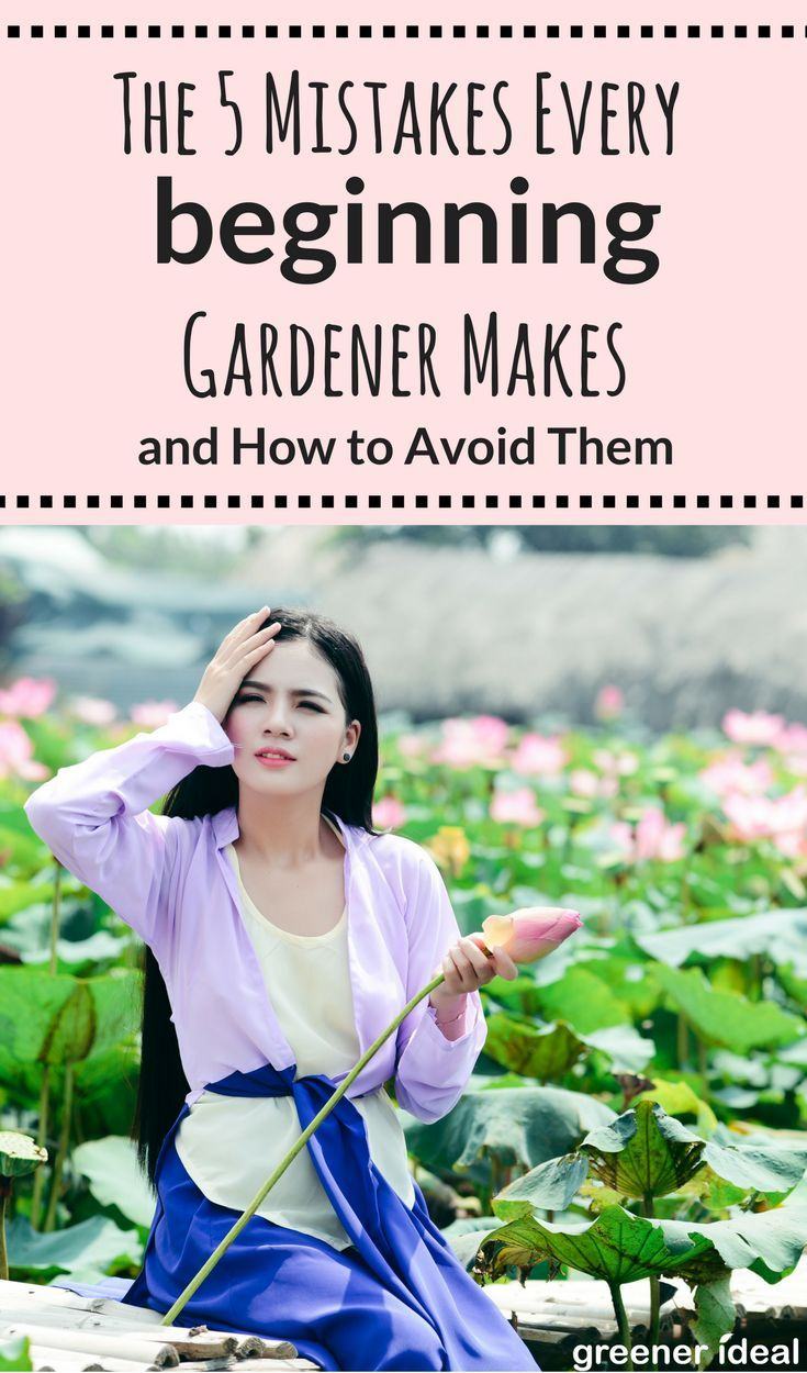 rookie gardeners who don't want to poison their petunias or smother their snapdragons should keep these five common gardening goofs in mind. If you follow them, you'll be well on your way to a lush, magazine-worthy garden!