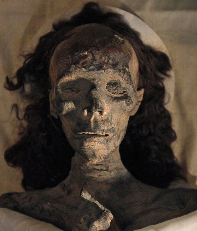 King Tut's grandmother Queen Tiye, the mother of Pharaoh Akhenaten. The hairpiece behind her is believed to have been made up of her own hair. It has not disintegrated because of the mummification process and the dry conditions within the tomb