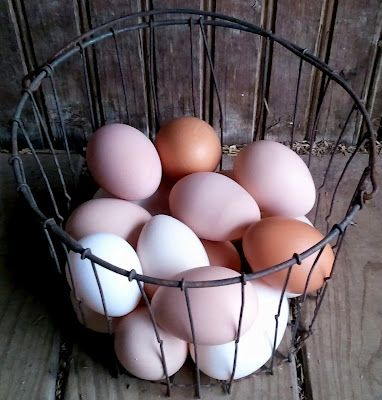 Handling and Storing Eggs