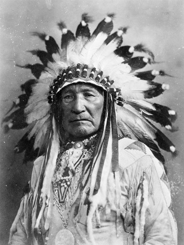 Tutti i rimedi naturali dei nativi americani Per migliaia di anni i nativi americani hanno usato le erbe non solo per guarire il corpo, ma anche per purificare lo spirito. In particolare le tradizioni orali giunte fino a noi hanno dimostrato che i nativi americani avevano appreso i poteri