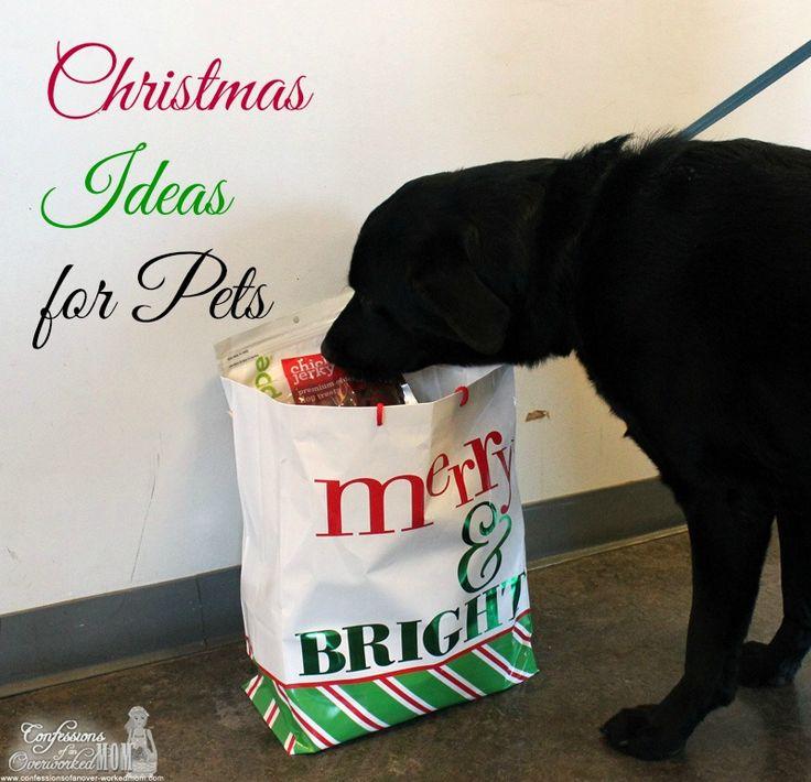 Christmas present ideas for pets #HappyAllTheWay #shop #cbias
