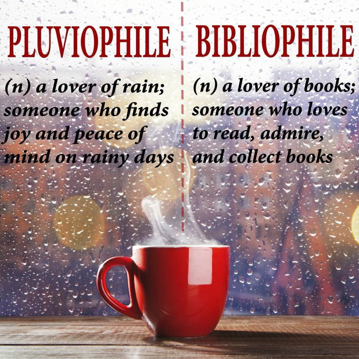 Are you a pluviophile a bibliophile or both quotes for Window quotes goodreads