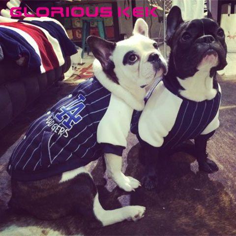 New Varsity Dog Clothes Winter Fashion Baseball Dog Coat Fleece Lining Warm Dog Jacket Medium Pug Bull Dog Cat Clothes Chihuahua