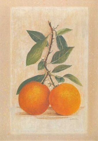 Two Oranges (Laurence David)