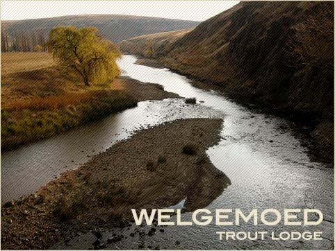 Trout Fly Fishing South Africa at Welgemoed Trout Lodge