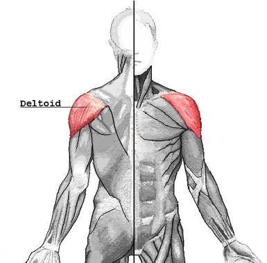 Mejorando la postura de hombros