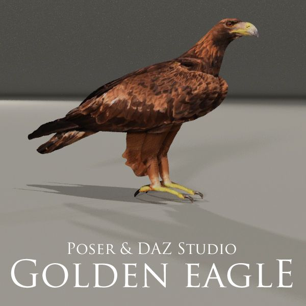 FREE Golden Eagle Prop for Poser and DAZ Studio http://www.most-digital-creations.com/freestuff.htm