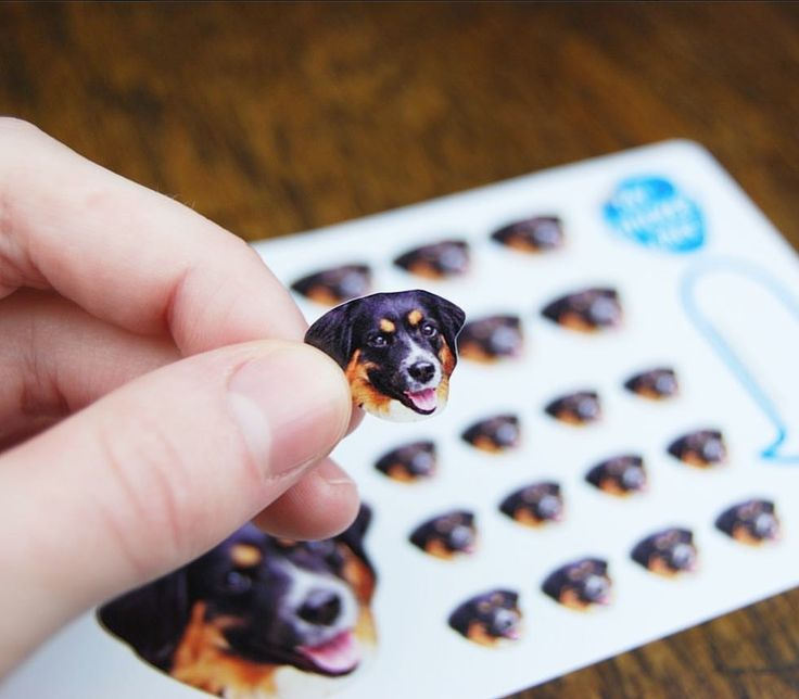 Precisely cut custom stickers made from your photos