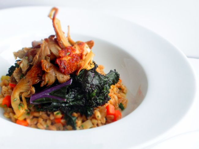 Oyster Mushrooms with Farro Risotto and Red Kale