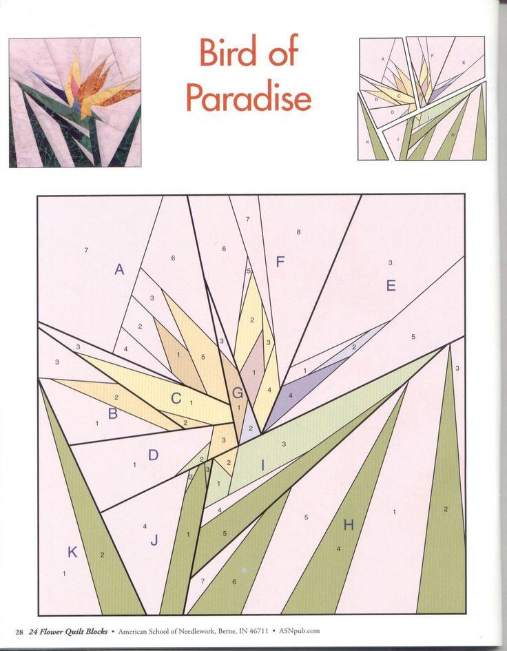 Ave del paraíso