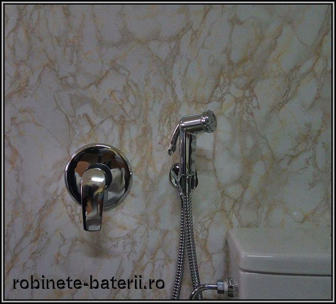Sistem de dus pentru igiena intima cu functie de bideu Metalia