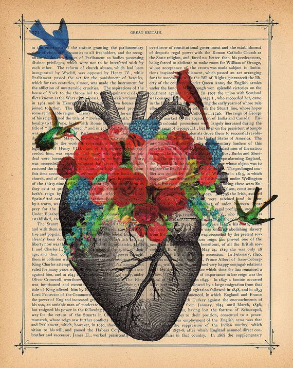 anatomic heart with flowers | Love Blossom Heart Art Print