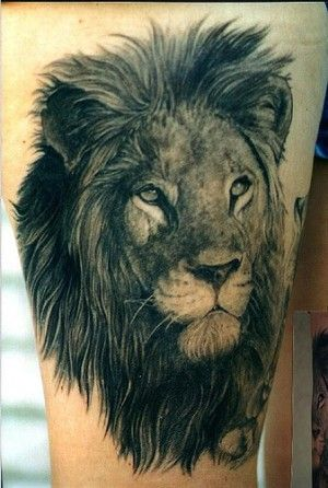 tattoo of a lion