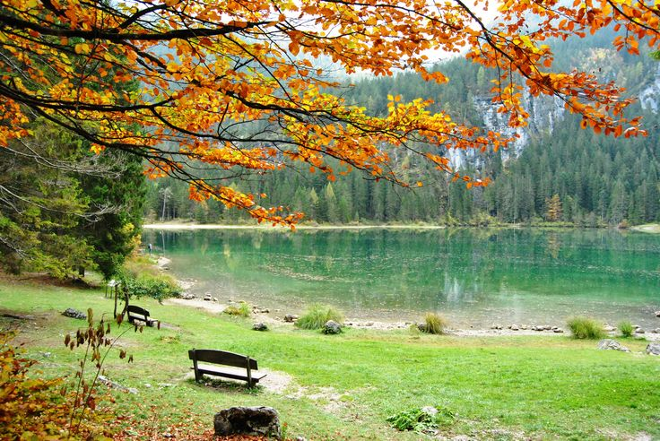 Lago di Tovel - Scopri l'itinerario su www.trentinowellnessblog.it #lagoditovel #parchitrentino #trentino #tovel #nature #parcoadamellobrenta