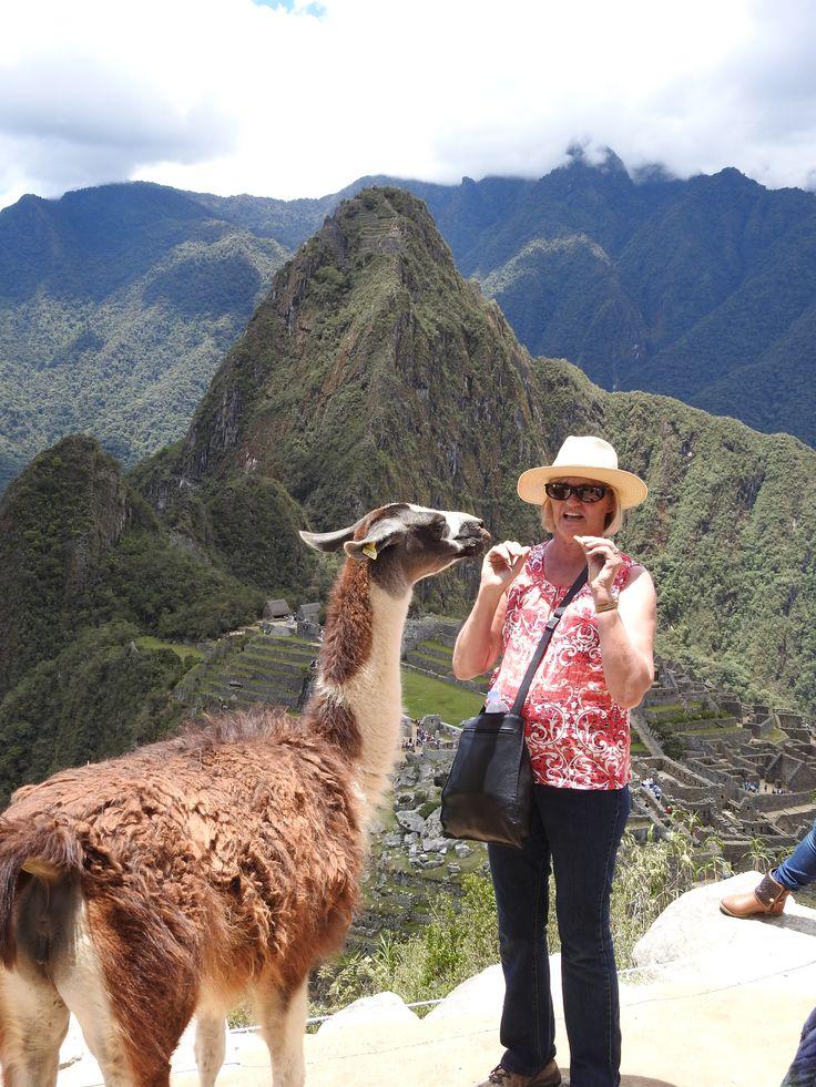 Helen at Machu Picchu with the Bannana eating LLama