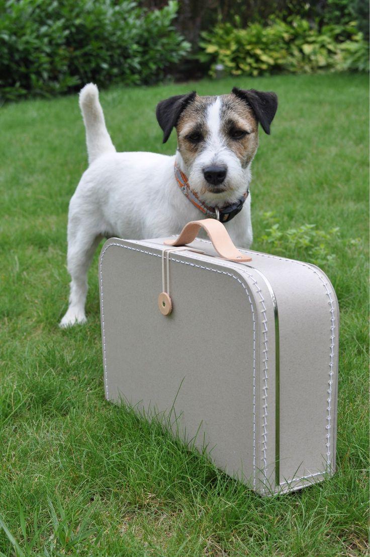 I like it. Můj kufřík.