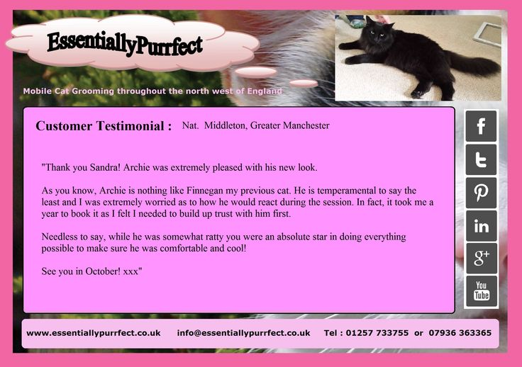 Customer Testimonial of EssentiallyPurrfect #mobile #catgrooming service.  Nat #Middleton #Manchester
