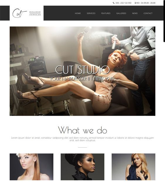 This hair salon WordPress theme has a responsive layout, a working Ajax contact form, a filterable portfolio, CSS3 and HTML5 code, a shortcode generator, easy color, background, and font customization, demo content, SEO optimization, and more.
