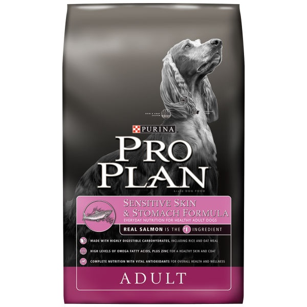 Best Dry Dog Food For Small Dogs With Sensitive Stomachs