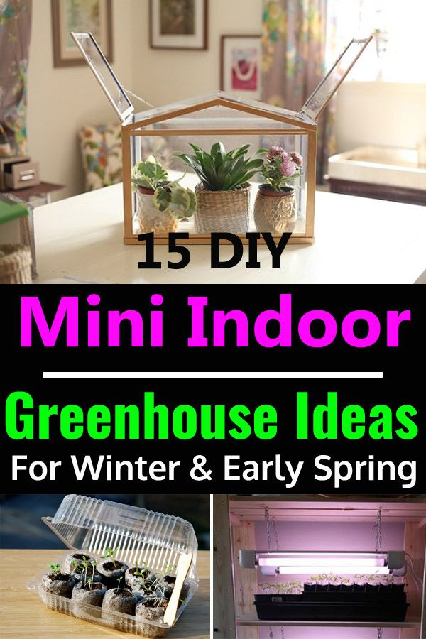 15 DIY Mini Indoor-Gewächshaus-Ideen für Winter & Vorfrühling