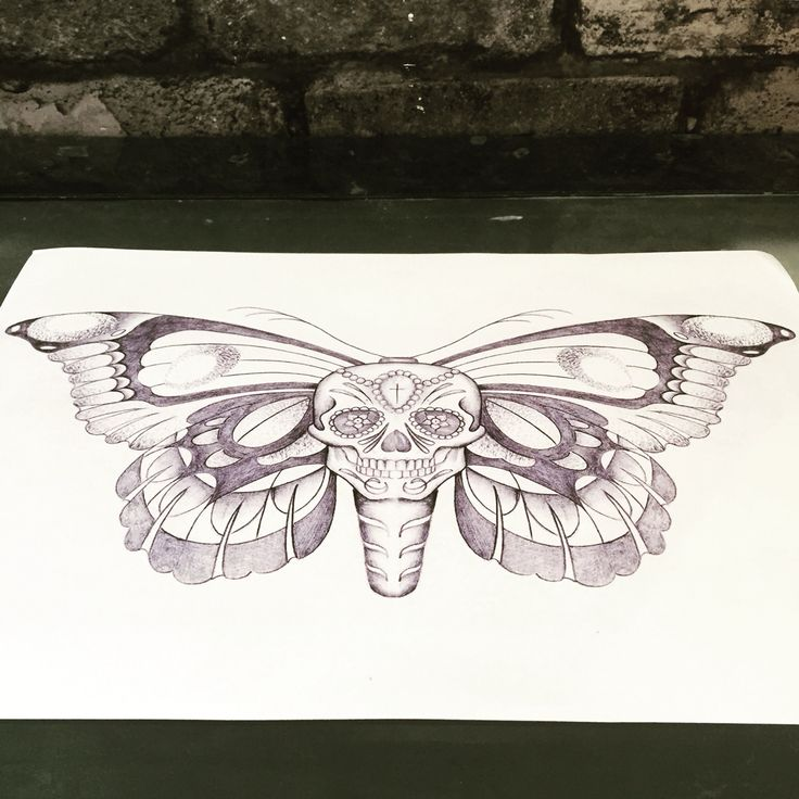 Skull butterfly drawing. Tattoo design.