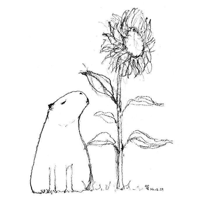 SHAN | 單 #capybara #sunflower # illustration