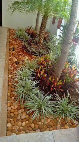 Resultado de imagen para croto en el jardin #Piasajismojardines #jardinesconpiedras