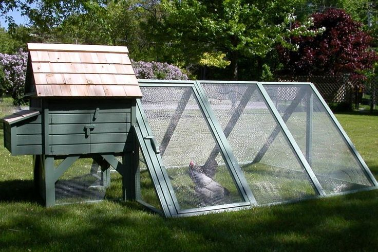 Backyard Chickens Coop :  chickens on Pinterest  Chicken coop designs, Pvc pipes and A chicken