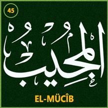 45_el_mucib