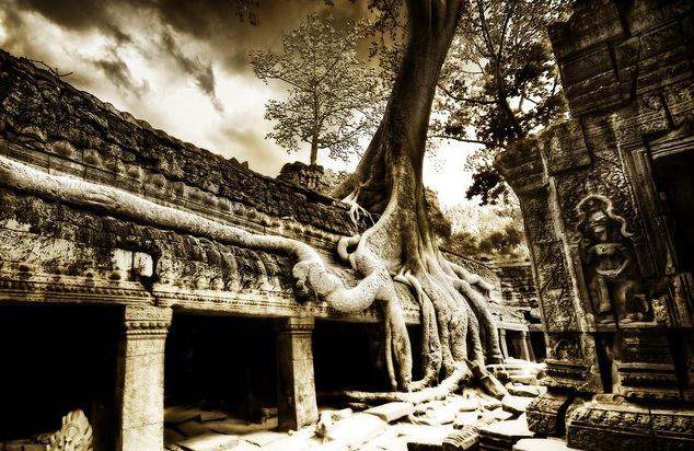 Ta Prohm ruins of Cambodia